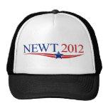 Swag 2012 del Newt Gorras