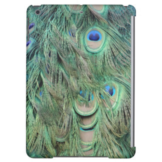 Swag Green And Blue Peacock Feathers