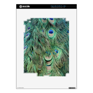 Swag Green And Blue Peacock Feathers Decal For The iPad 2