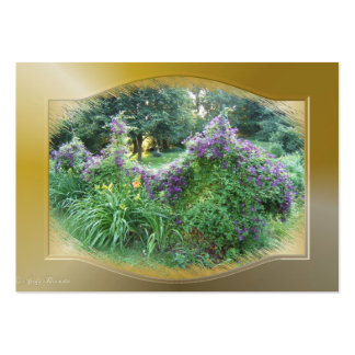 Swagged Clematis ~ ATC Large Business Cards (Pack Of 100)