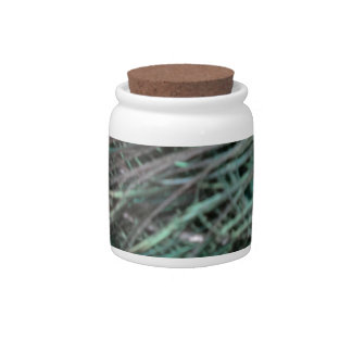 Swagger Peafowl Feathers Candy Jars