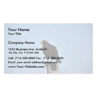 Swainson's Hawk Double-Sided Standard Business Cards (Pack Of 100)