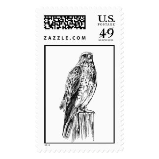 Swainson's Hawk Perched Postage Stamps