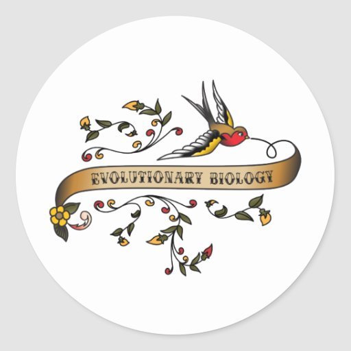 Swallow and Scroll with Evolutionary Biology Classic Round Sticker