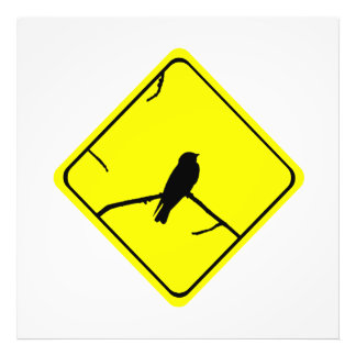 Swallow Bird Silhouette Caution or Crossing Sign Art Photo