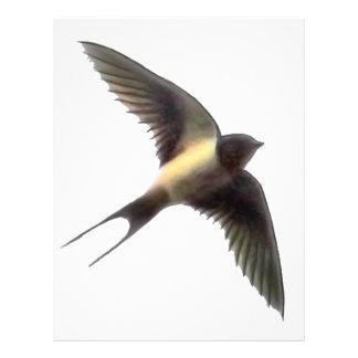 Swallow Clear Personalized Letterhead