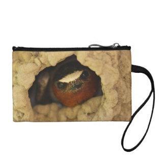swallow coin purse