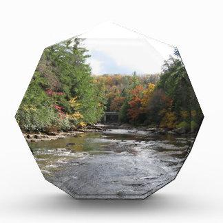 Swallow Falls State Park Award