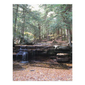 Swallow Falls State Park Letterhead