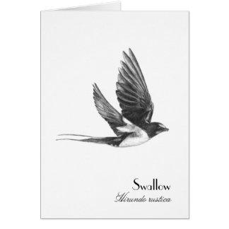 Swallow in flight card