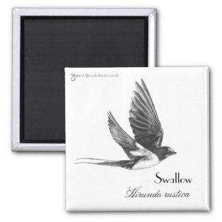 Swallow in flight refrigerator magnets