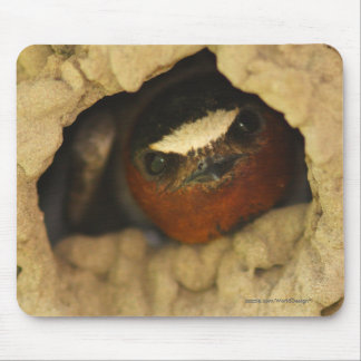 Swallow Mouse Pad