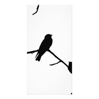 Swallow or Swifts Silhouette Love Bird Watching Card