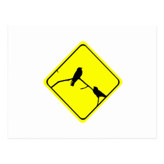 Swallow or Swifts Warning Sign Love Bird Watching Postcard