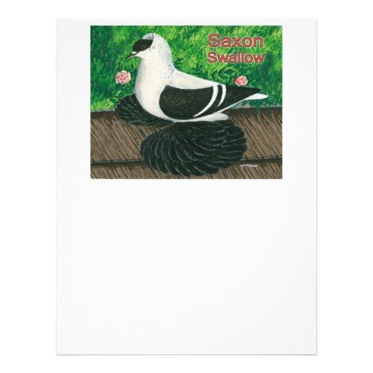 Swallow Pigeon:  Saxon Flyer