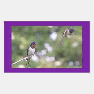 Swallow Rectangular Sticker