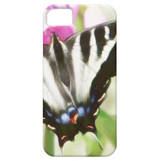 Swallow Tail Butterfly case