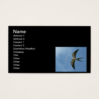 Swallow-tailed Kite Business Card