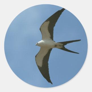 Swallow-tailed Kite Classic Round Sticker