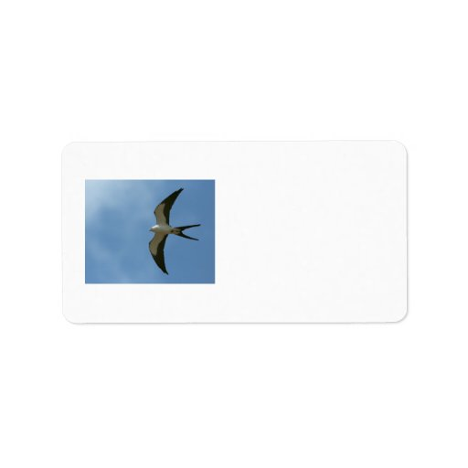 Swallow-tailed Kite Custom Address Labels