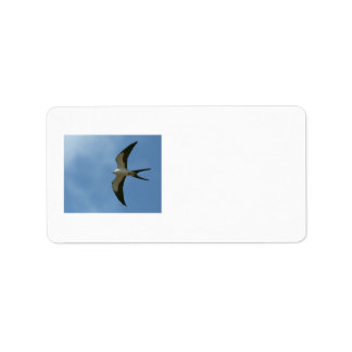 Swallow-tailed Kite Label