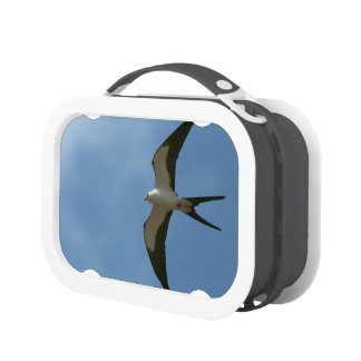 Swallow-tailed Kite Lunch Box