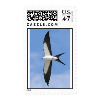 Swallow-Tailed Kite Postage