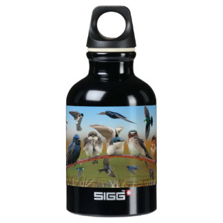 Swallows and Purple Martin Aluminum Water Bottle