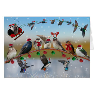 Swallows and Purple Martins Christmas Card