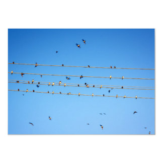 Swallows on wire card