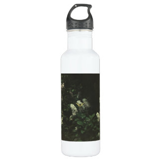 Swallowtail 01 stainless steel water bottle