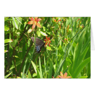 Swallowtail and lilies card