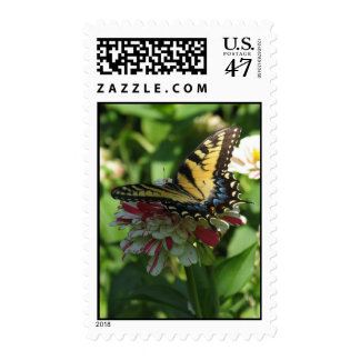 Swallowtail and Zinnias Postage