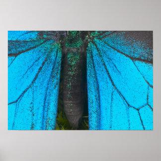 Swallowtail azul de la montaña (Papilio Ulises) Póster
