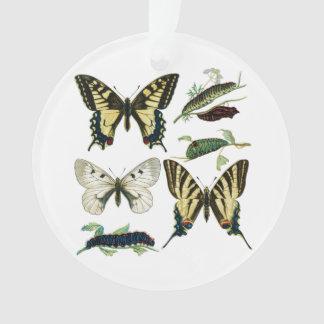 Swallowtail Butterflies, Caterpillars and Moth Ornament