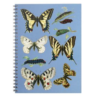Swallowtail Butterflies, Caterpillars and Moths Spiral Notebook