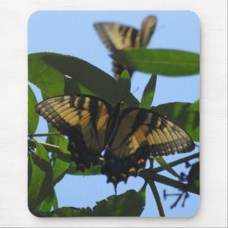 Swallowtail Butterflies Mouse Pad