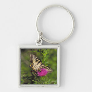 Swallowtail Butterfly and Bee on a Flower. Keychain