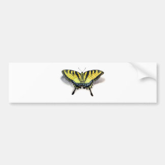 Swallowtail Butterfly Bumper Sticker