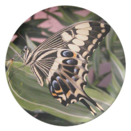 Swallowtail Butterfly Dinner Plate