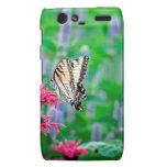 Swallowtail Butterfly Droid RAZR Cases