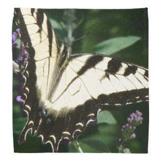 Swallowtail Butterfly Flowers Floral Bandana