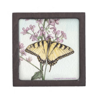 Swallowtail Butterfly Gift Box