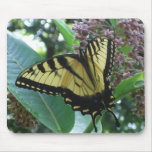Swallowtail Butterfly I on Milkweed at Shenandoah Mouse Pad
