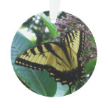 Swallowtail Butterfly I on Milkweed at Shenandoah Ornament