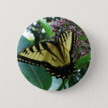 Swallowtail Butterfly I on Milkweed at Shenandoah Pinback Button
