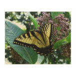Swallowtail Butterfly I on Milkweed at Shenandoah Wood Wall Decor