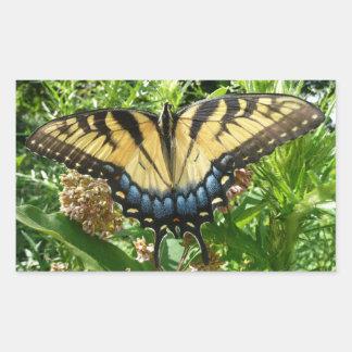 Swallowtail Butterfly II at Shenandoah Rectangular Sticker
