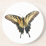 Swallowtail Butterfly III Beautiful Colorful Photo Drink Coaster