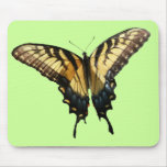 Swallowtail Butterfly III Beautiful Colorful Photo Mouse Pad